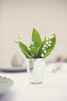 In love with the beauty and elegance. Lily of the Valley.