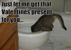 Fishing for Valentines Gifts