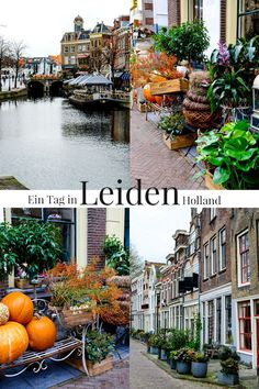 A morning in the pretty town of Leiden in Holland. - A day in Leiden Holland Europe Destinations, Europe Travel Tips, European Travel, Holiday Destinations, Travel Hacks, Tour En Amsterdam, Guide Amsterdam, Amsterdam Travel, Hotel Amsterdam
