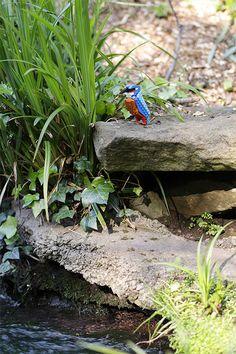 Lego birds by Tom Poulsom.
