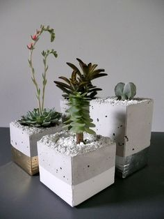Easy to make containers - use lightweight concrete mix - milk cartons for molds (note circular opening for plant) & color at bottom