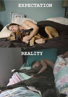 Expectation...Reality