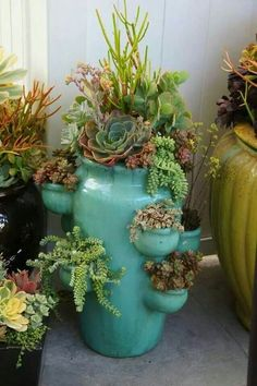 Great use of a strawberry pot