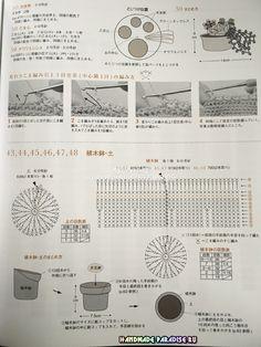 Схемы вязания крючком кактусов и суккулентов (4)