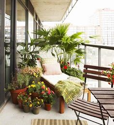Small Patios, Porches & Balconies Urban Garden Balcony: An abundance of potted plants provides much needed privacy.Urban Garden Balcony: An abundance of potted plants provides much needed privacy. Small Balcony Design, Small Balcony Garden, Porch And Balcony, Balcony Plants, Balcony Ideas, Potted Plants, Modern Balcony, Small Balconies, Corner Garden