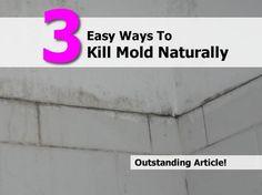 Easy Ways To Kill Mold Naturally