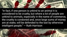 Blood money: why finance animal cruelty, go #vegan for cruelty free choices
