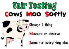 Cows Moo Softly - mnemonic to remember to CHANGE 1 variable, MEASURE OR OBSERVE and to CHANGE 1 variable in scientific fair tests.