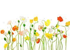 #poppies #whimsical #flowers #beauty #nature #watercolor #watercolour #art #painting #brigitteklassenart
