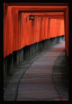 Fushimi Inari Taisha shrine, Kyoto, Japan 京都 伏見稲荷