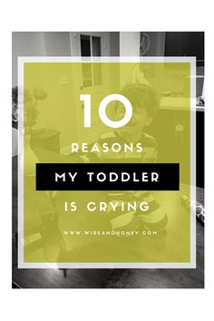 3-year-olds are...interesting. Check out the Top 10 reasons my child was crying this week!