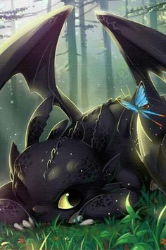 How to train your dragon, toothless, night fury, dragon awwww! :) toothless is so adorable. i want a Toothless. no i want TOOTHLESS not just A Toothless! i want the real one! Toothless And Stitch, Toothless Dragon, Hiccup And Toothless, Httyd, Croque Mou, Film Manga, Cute Dragons, Dragon Rider, Night Fury