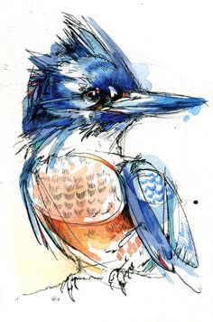 Belted Kingfisher, Female. A small painting from back in May. India ink, watercolor paint, and Tombow markers. http://finchfight.tumblr.com