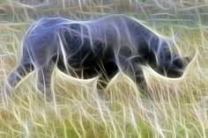 Fractal Black Rhino by RayMorris1, via Flickr