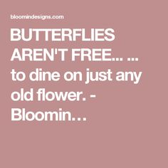 BUTTERFLIES AREN'T FREE... ... to dine on just any old flower. - Bloomin…