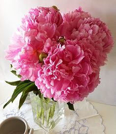 One day I will fill the backyard with giant peony bushes to ensure I will have them in every room of my house