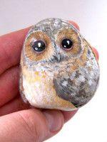 Rock owl
