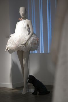Poésie - 2015 - collection Elle #mannequin #elle #dog #cofrad