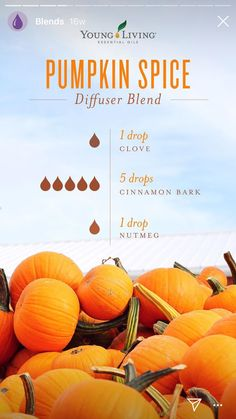 Young Living Cinnamon essential oil is a must have for your collection. Add a drop to your diffuser for a warm, inviting scent. Fall Essential Oils, Cinnamon Bark Essential Oil, Essential Oil Diffuser Blends, Essential Oil Uses, Young Living Essential Oils, Diy Cosmetic, Essential Oil Combinations, Diffuser Recipes, Diffuser
