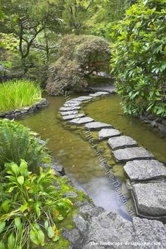 Stepping stones garden path through a pond.