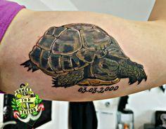 Domex ink Tattoo Oberarm Schildkröte