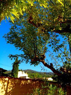 Brignoles, France | wezzoo | 2013-06-13