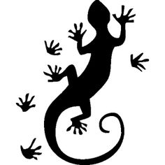 salamandre-576.jpg (300×300)