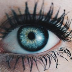 eyes truths interesting, signs and signs that can tell the overall health of yourself Beautiful Eyes Color, Pretty Eyes, Cool Eyes, Lenses Eye, Crazy Eyes, Human Eye, Eye Photography, Eye Art, Blue Eyes