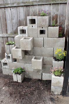 Cinder Block Wall / Garden