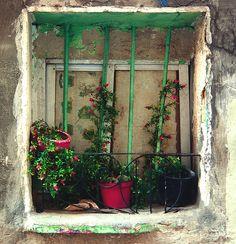 ventana.