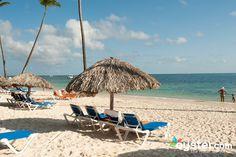 Beach at the Dreams Palm Beach Punta Cana