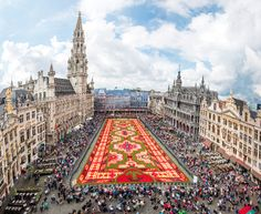 From waffles and beer to historic buildings and flower carpets, here's why Brussels, Belgium should be on your European travel itinerary.