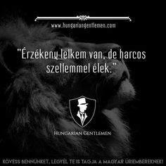 Teljesen igaz!!! Quotations, Qoutes, Gym Quote, Infj, Deep Thoughts, Sarcasm, Motivational Quotes, Poems, Wisdom