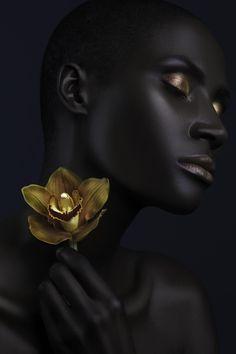 © Lindsay Adler, Dark Orchid