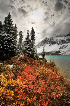 ✯ Bow Lake and Mount Crowfoot - Banff National Park - Alberta