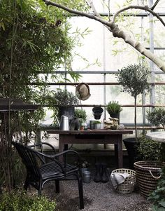 Daniella Witte_Ikea Life hemma_Planteringsgäldje in the greenhouse Patio Ikea, Ikea Outdoor, Indoor Outdoor Living, Outdoor Decor, Plein Air Ikea, Patio Balcony Ideas, Ikea Plants, Magic Places, Ivy House
