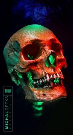 Skull Wallpaper, Mood Wallpaper, Skull Reference, Skeleton Anatomy, Crane, Anatomy Sketches, Gothic Aesthetic, Dark Images, Skull Tattoos