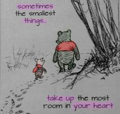 The best example is Winnie the pooh and piglet. One of the most perfectest friendships around.