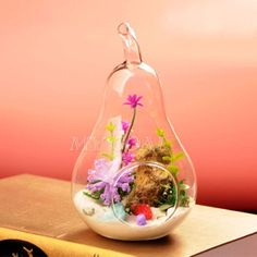 Pear-Crystal-Glass-Vase-Planter-Terrarium-Container-Hydroponic-Pot-Home-Decor