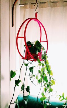 bentwood hanging planter painted pink!