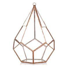 Teardrop Glass Terrarium Kit