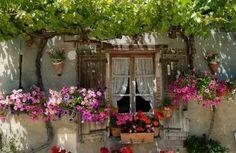 Boho/gypsy cottage window