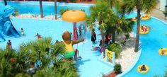 Myrtle Beach Resorts - Myrtle Beach Resort - Sea Mist Oceanfront Resort Hotel