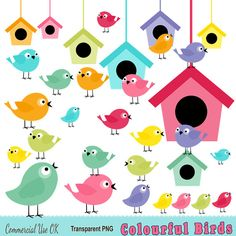 32 Colourful Birds and Birdhouses Clipart  by DigitalPaperCraft