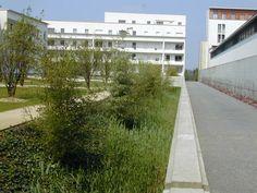 Atelier de paysages Bruel Delmar - Quartier de la Morinais - Les cœurs d'îlot