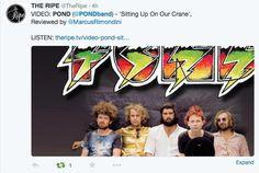 The Ripe Tweet.