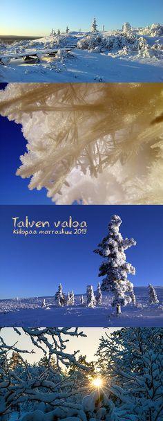 Talven valo #talvi #Lappi #light #winter #licht #spitzenerlebnisse #top #experience