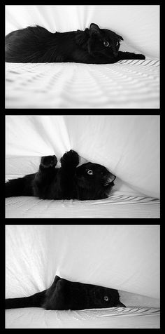 making the bed...
