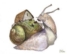 Snail-ship  by ~Stefana-Tserk