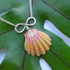 Sunrise Shell Necklace, Silver, Infinity Symbol, Love, Hawaii Beach Jewelry, Rare Hawaiian Shell, Valentines Day Gift for Her, Wire Wrapped